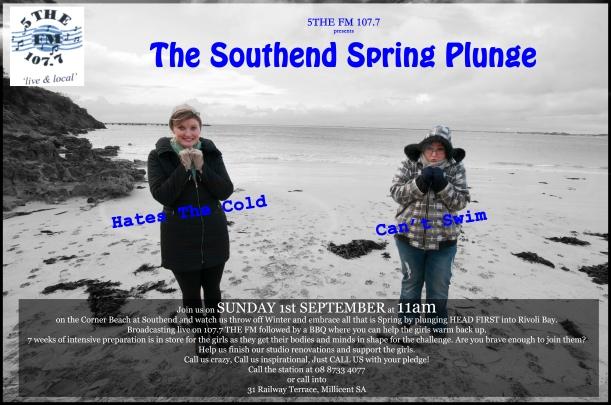 Spring Plunge Poster