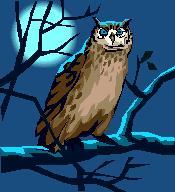 049. Night Owl