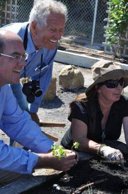 Mayors trying his green thumb